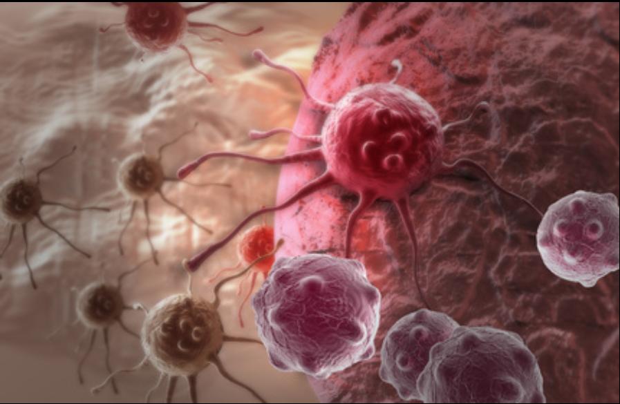 ingefærshots til dit immunforsvar